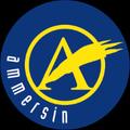 Logo von R.Ammersin GmbH